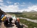 Yaks carry luggage in Mt. Amnye Machen