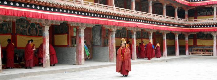 A yellow-hat monk at Kumbum Monastery in Amdo