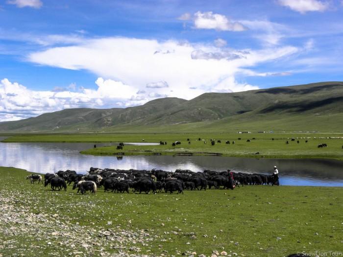 Tibetan Nomads in Nangchen county in Kham Tibet