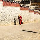 Shangri-la to Lhasa
