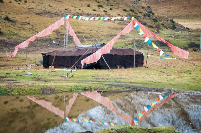 Nomad black tent