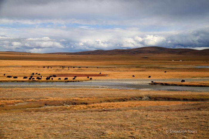 Kham Tibet Group Tour-5