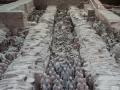 xian-terra-cotta-army