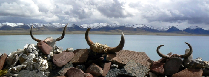Yak horns resting on a pile of prayer stones at Namtso