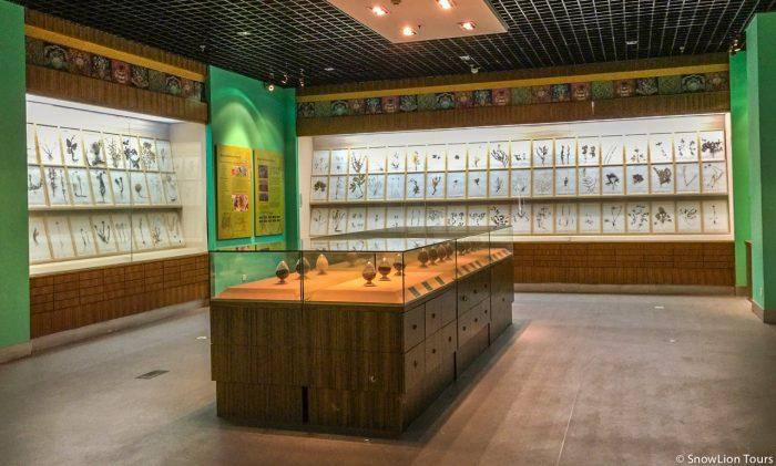 Tibet medicine herbs
